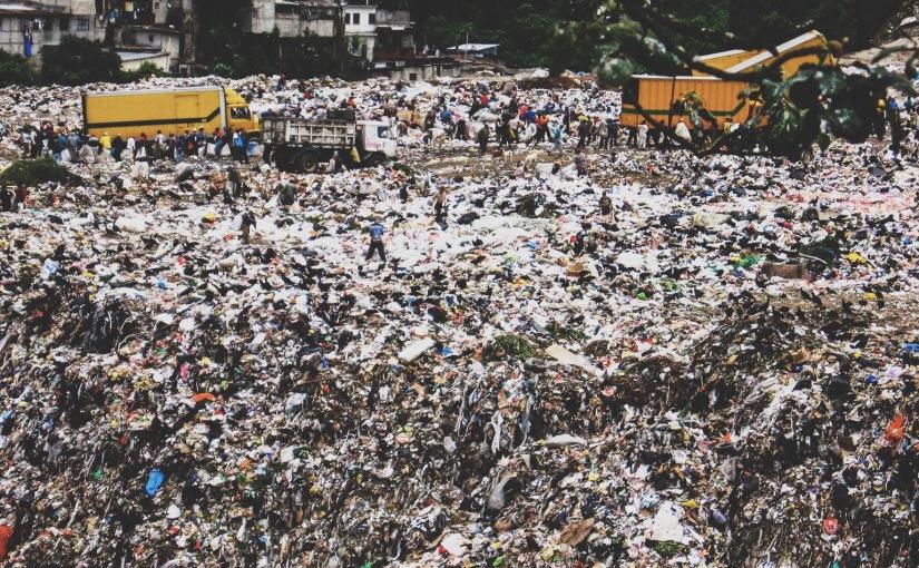 krogul na śmieciach. czyli garbage dump parttwo.